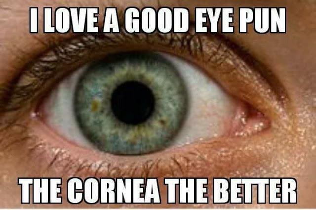 Cornea pun