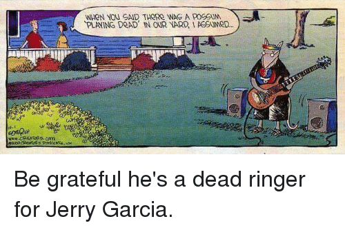 Dead ringer for Jerry Garcia