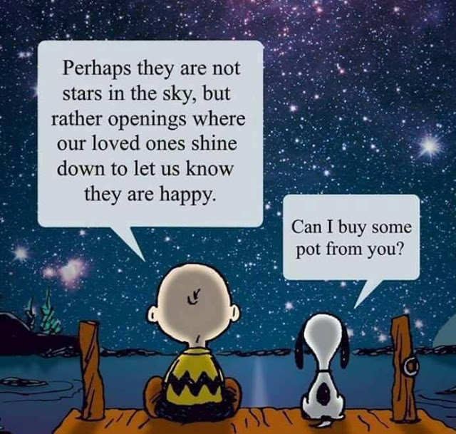 Peanuts_Pot