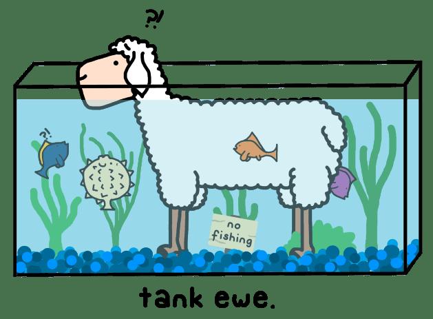 tank-ewe