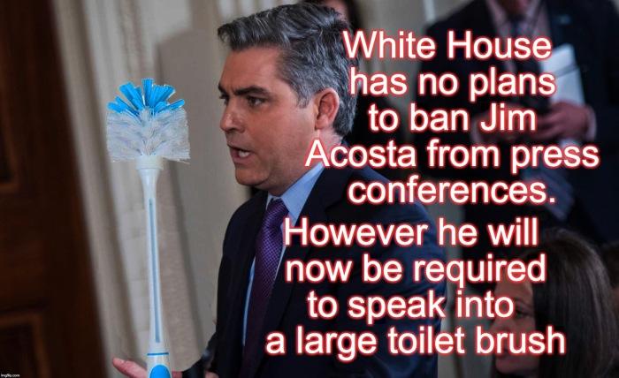 Acosta toilet brush