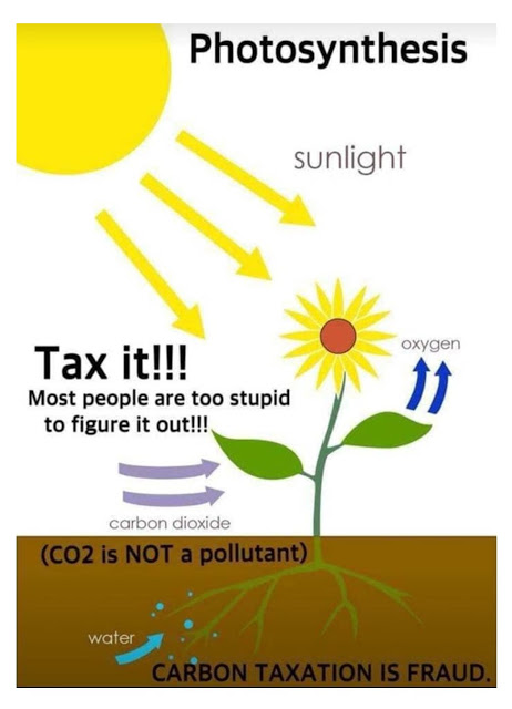 CO2 tax fraud