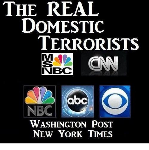 Domestic terrorists