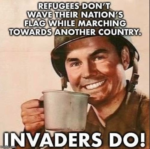 migrant-invaders