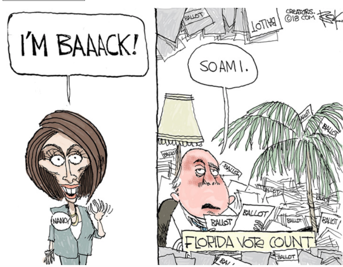 Nancy P. Lousy-Florida vote count