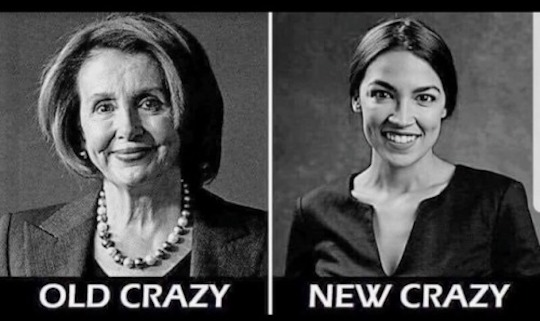 Nancy P. Lousy-Occasional Cortex-crazy