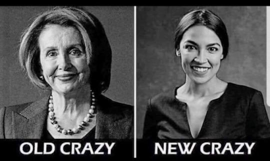 Nancy P. Lousy-Occasional Cortex-crazy