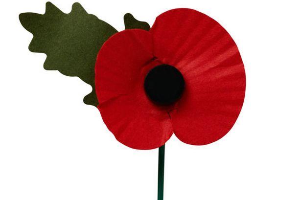 veteran-s-memorial-poppy