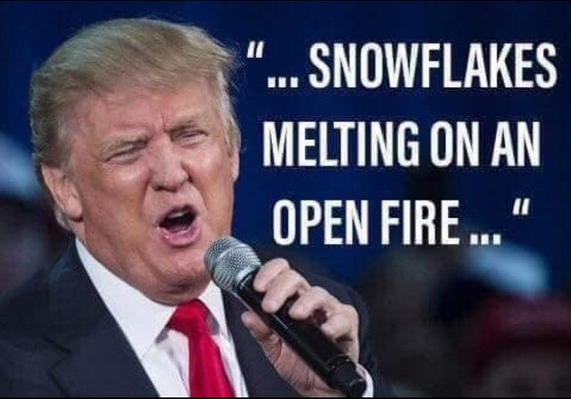 Snowflakes melting on an open fire
