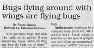 headline12