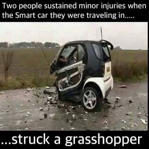 Smart car-grasshopper