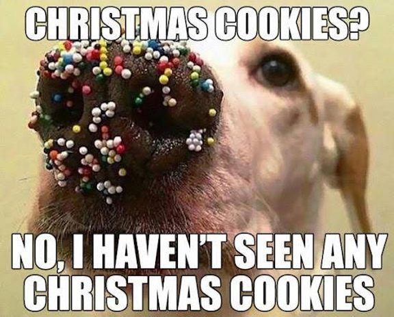 What-Christmas-cookies