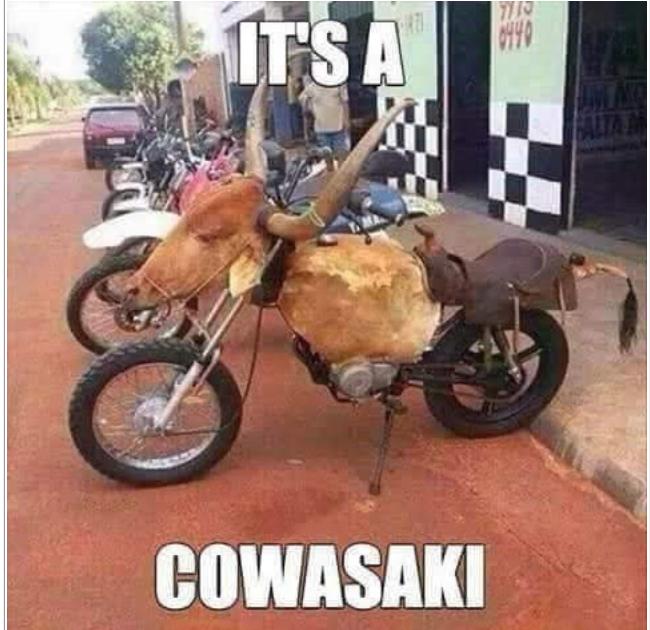 Cowaski