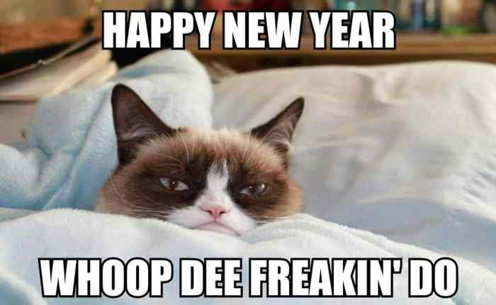 New-Year-Whoop-de-freakin-do