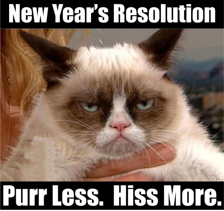 New Year resolution-purr less