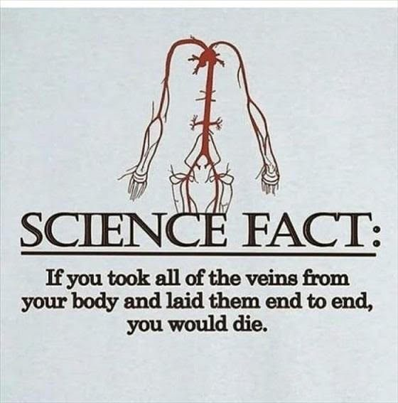 a-science-fact-1
