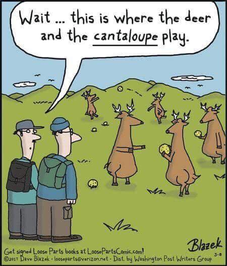 deer and canteloupe play