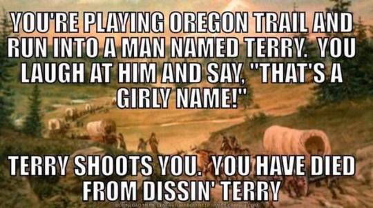 dissin' terry