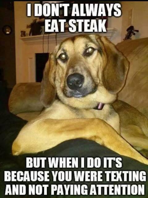 i-dont-always-eat-steak...