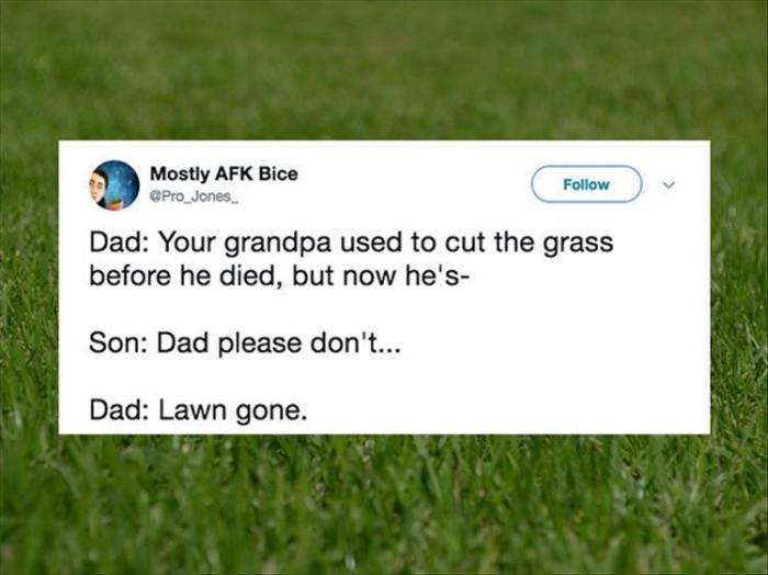 lawn gone