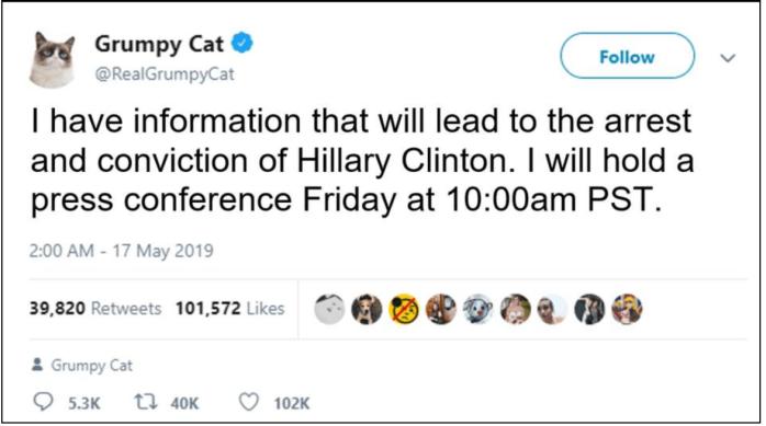 Grumpy cat-Hitlery
