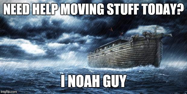 I Noah guy