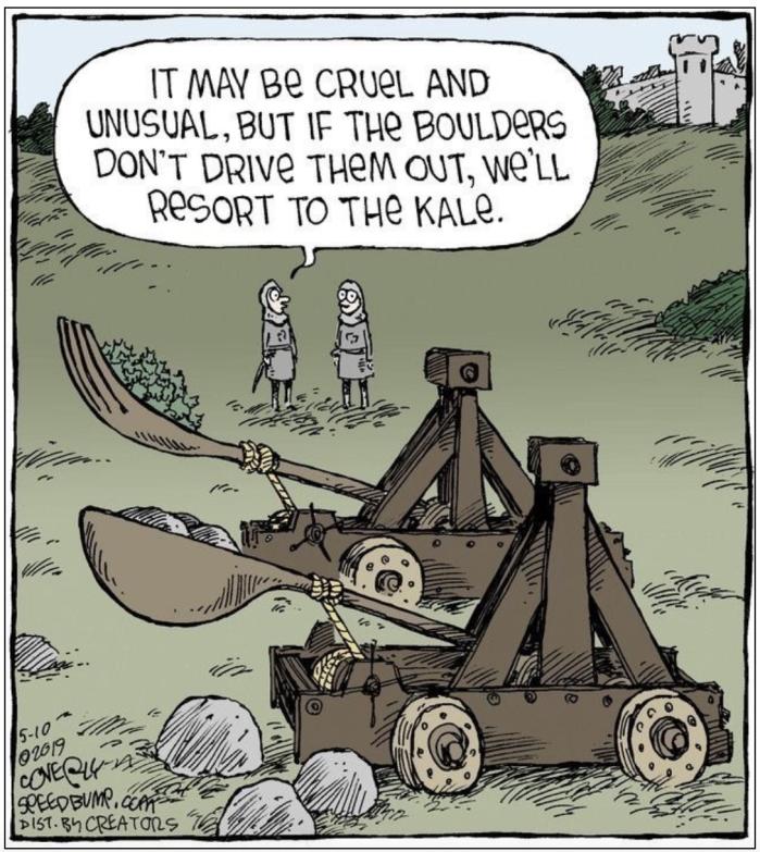 Kale launcher