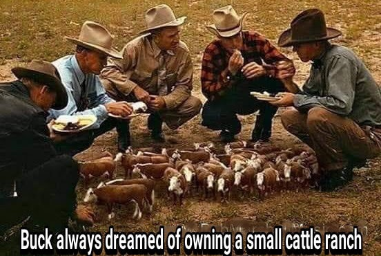 Small cattle ranch
