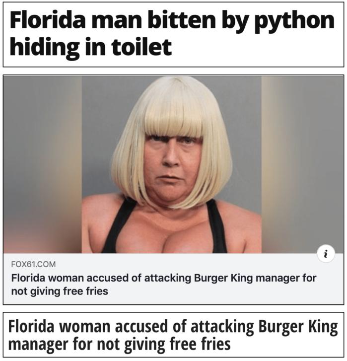 Floriduh-python in toilet