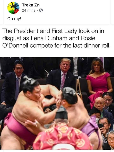 Lena-Rosie-Sumo