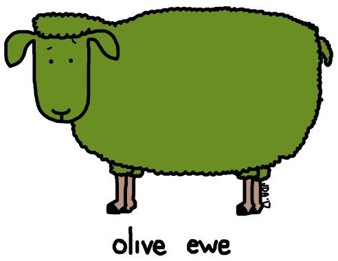 olive-ewe