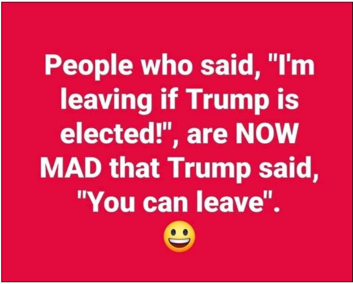 Leave if Trump is elected
