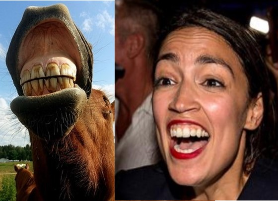 Separated at Birth AOC-horse teeth