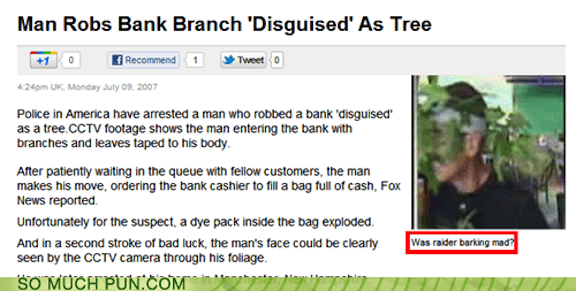 YJCMTSU-bank robber