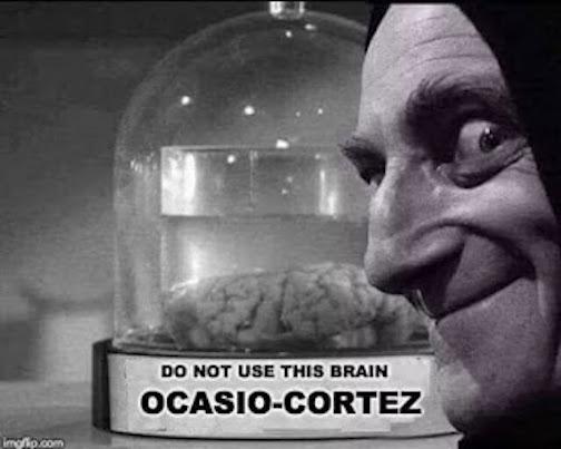 aoc-brain-feldman