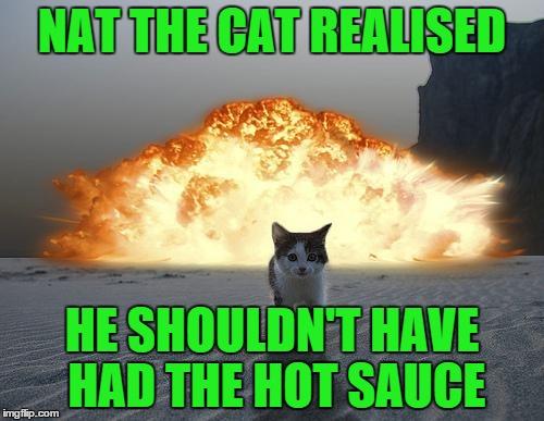 Cat hot sauce