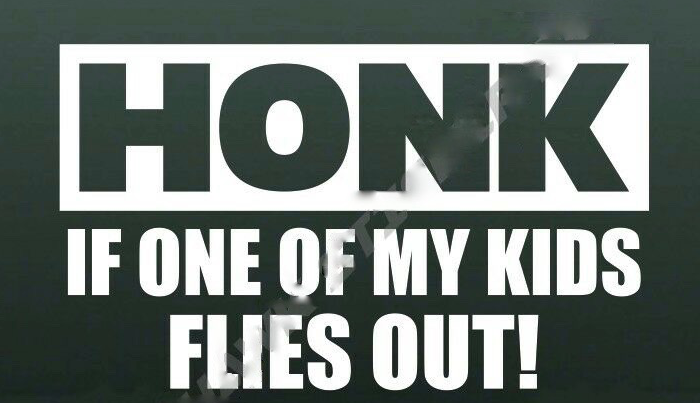 Honk if one of my kids flies out