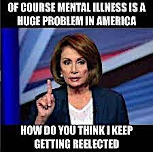 Nancy P. Lousy-mental illness