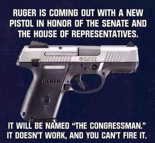 Ruger Congressman