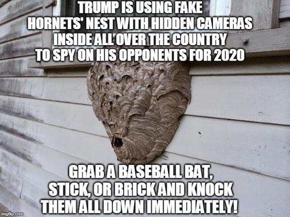 Trump-hornets nest
