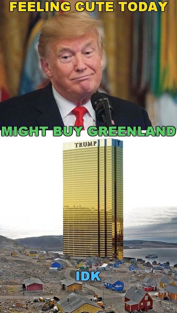 Trump might buy Greenland