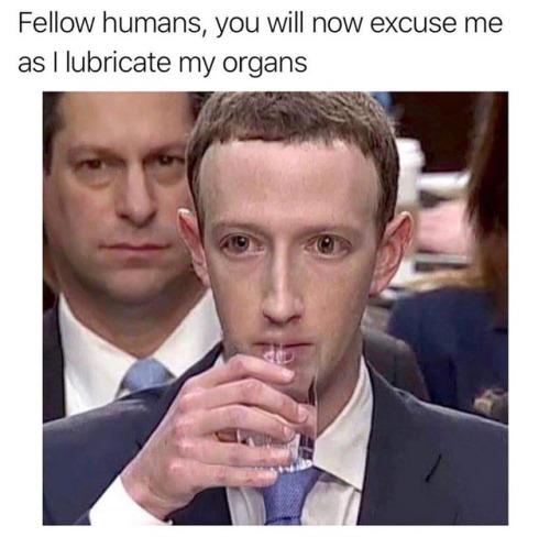 Zuckerberg-water