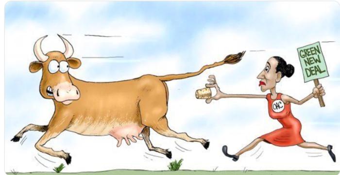 AOC-cow fart