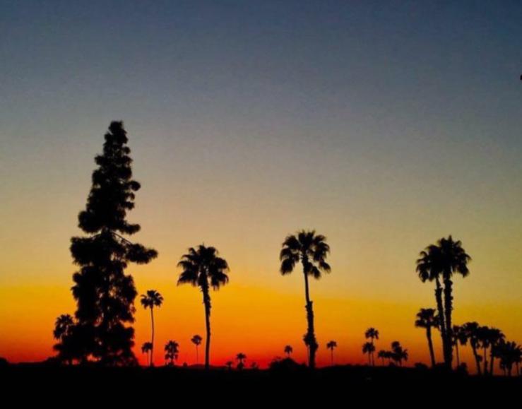 Arizona Sunset-Sludgo