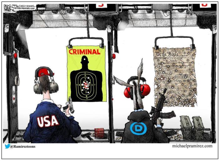DemocRATS vs. the Constitution