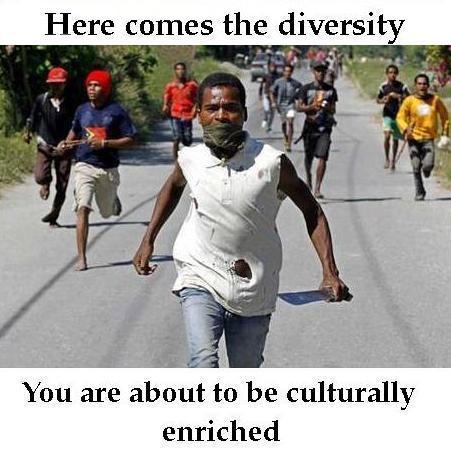 diversity=cultural enrichment