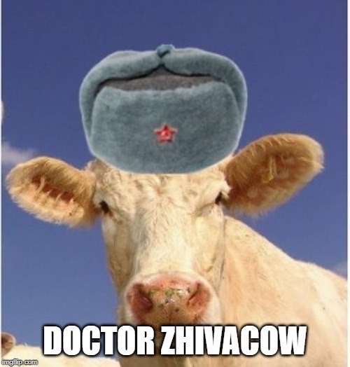 Dr. Zhivacow