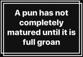 Pun fully groan