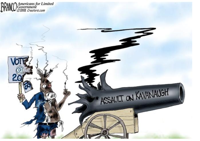 'Rats assault on Kavanaugh blows up