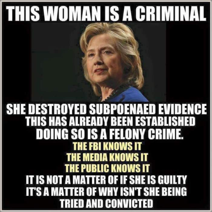 hitlery is-a-criminal
